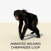 Animated Walking Chimpanzee 1 3d model