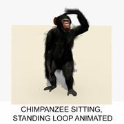 Animated Sitting Standing Sitting Chimpanzee 3d model