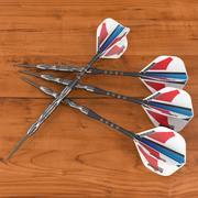 dart 2 3d model