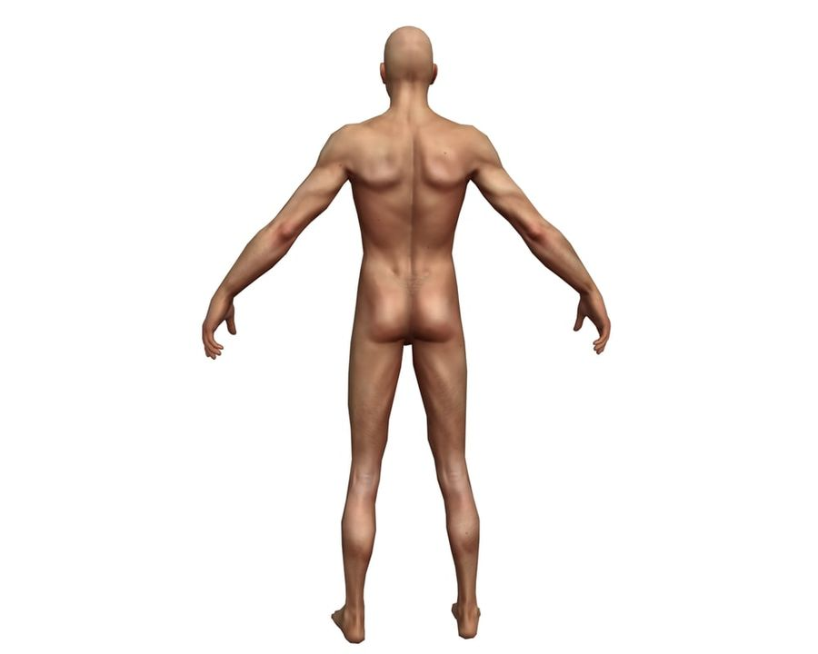 Male human character royalty-free 3d model - Preview no. 7