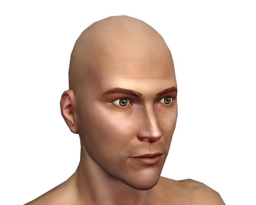 Male human character royalty-free 3d model - Preview no. 3