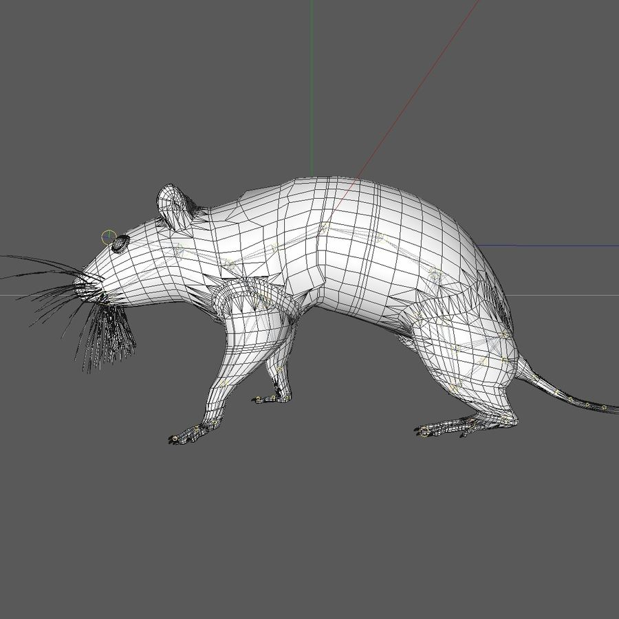 Animated Running Grey Mouse royalty-free 3d model - Preview no. 12