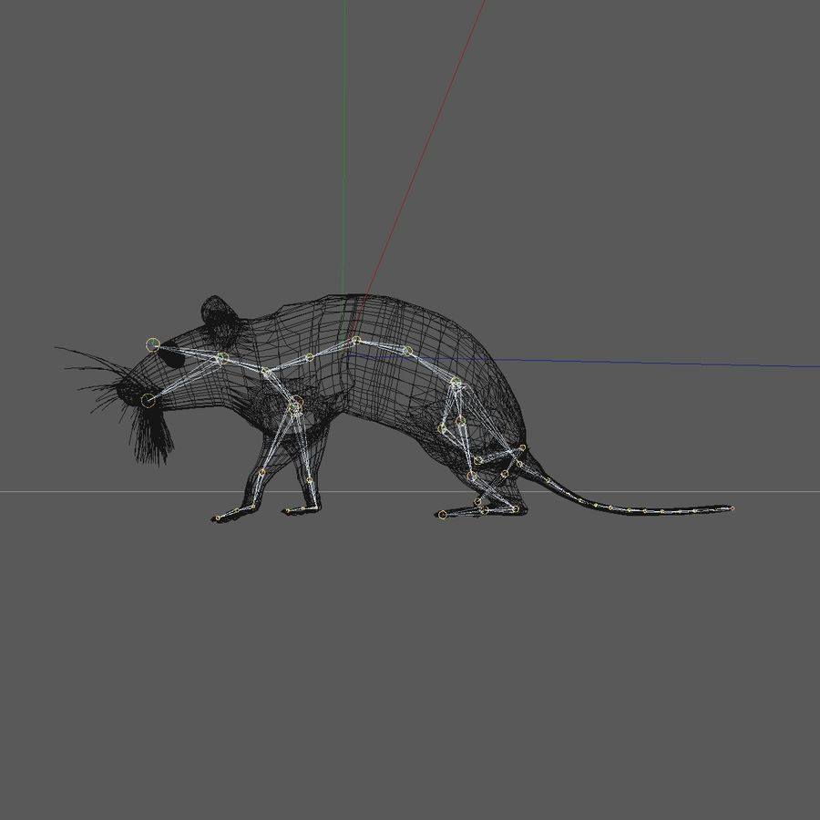 Animated Running Grey Mouse royalty-free 3d model - Preview no. 15