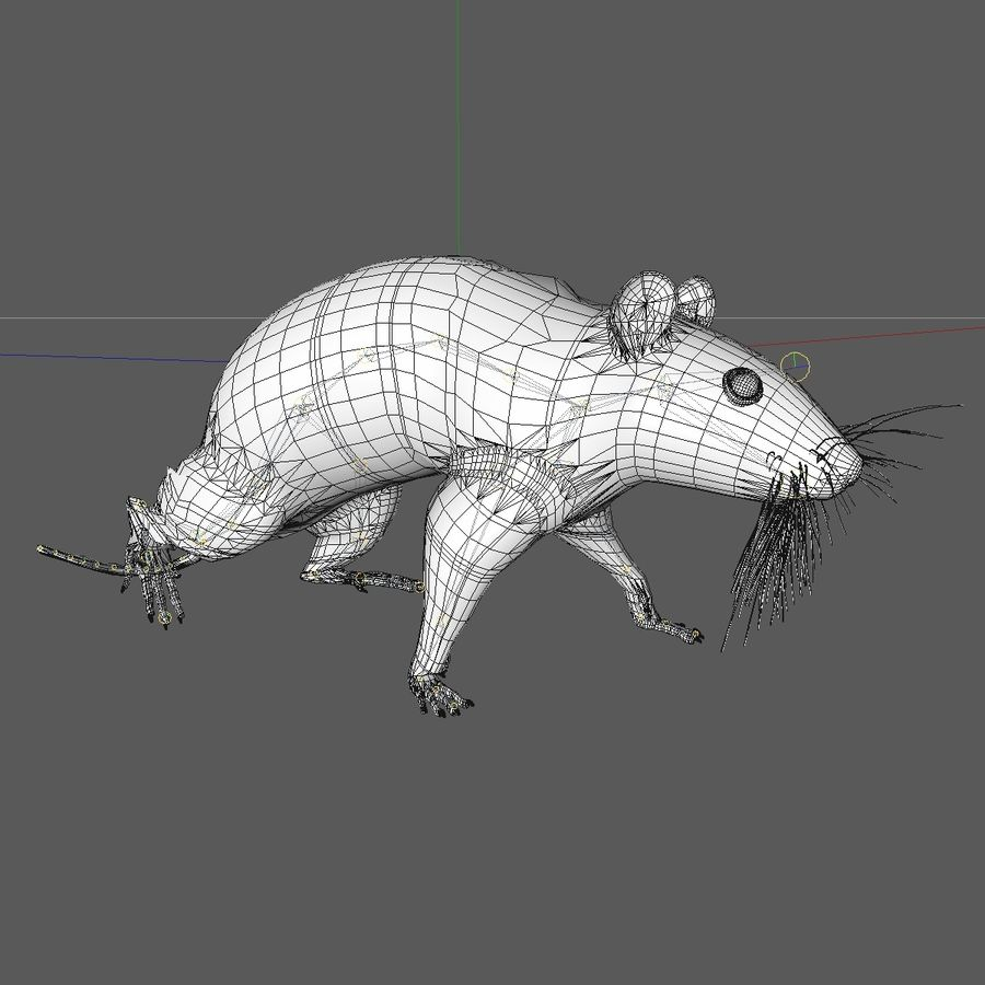 Animated Running Grey Mouse royalty-free 3d model - Preview no. 13