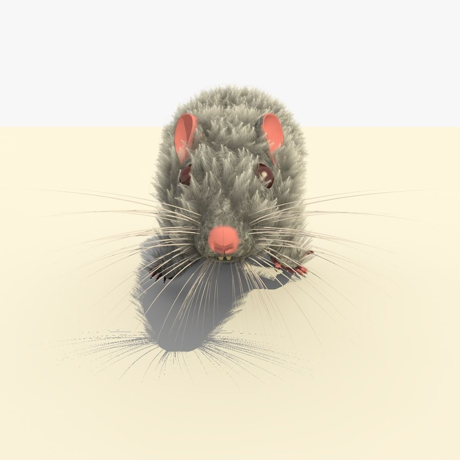 Animated Running Grey Mouse royalty-free 3d model - Preview no. 8