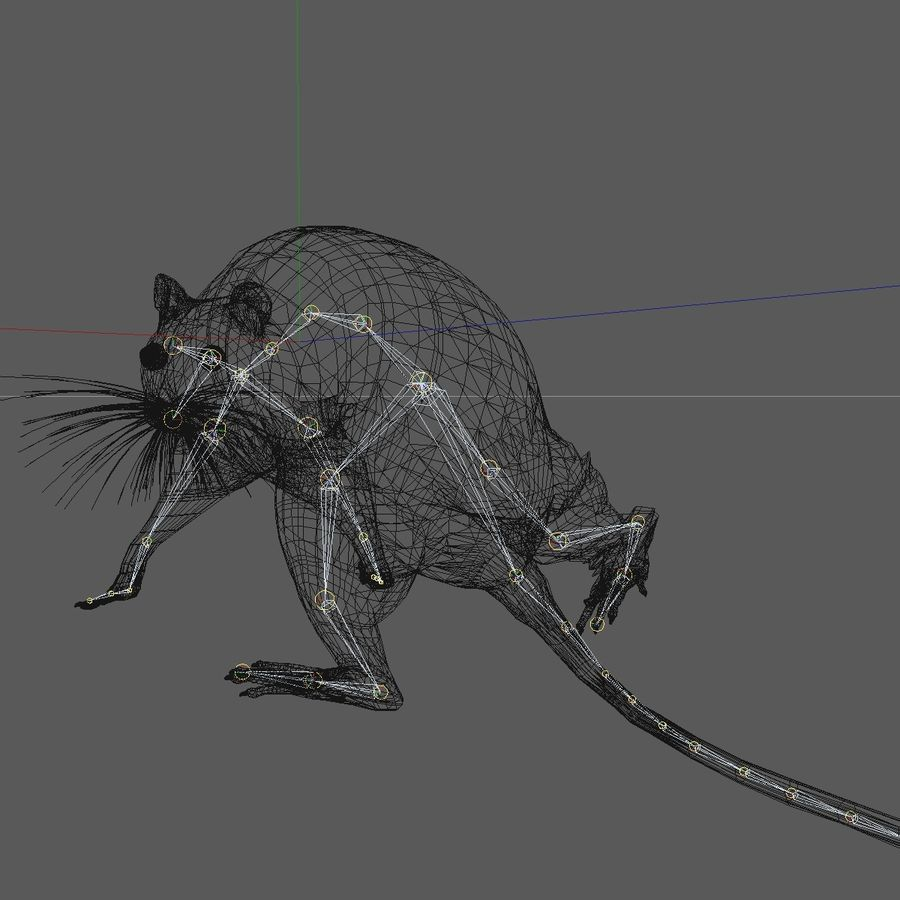 Animated Grey Walking Mouse royalty-free 3d model - Preview no. 16