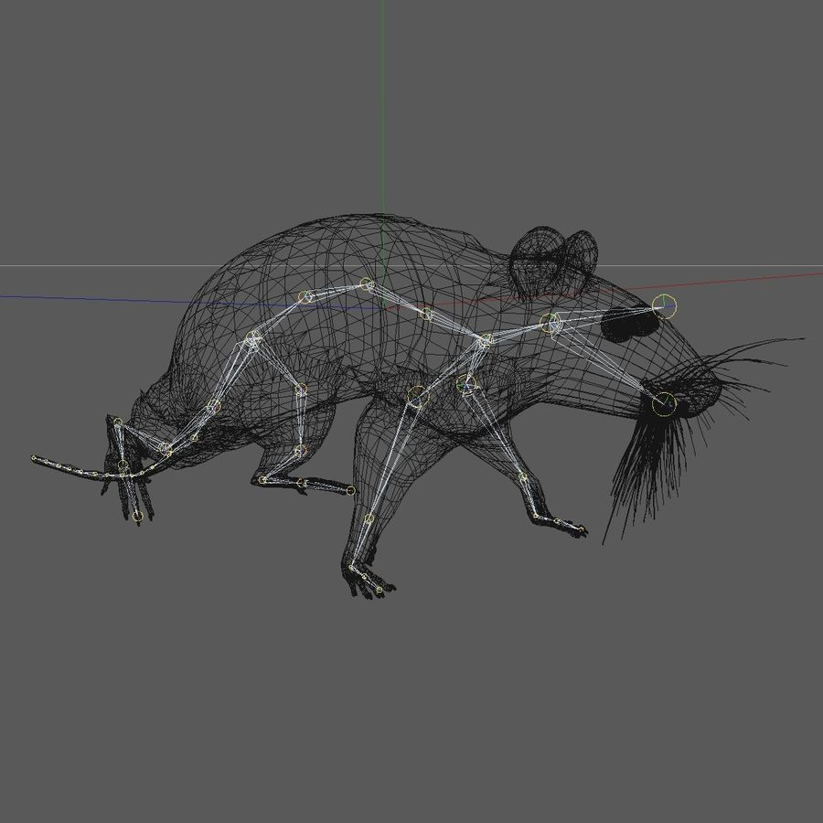 Animated Grey Walking Mouse royalty-free 3d model - Preview no. 14