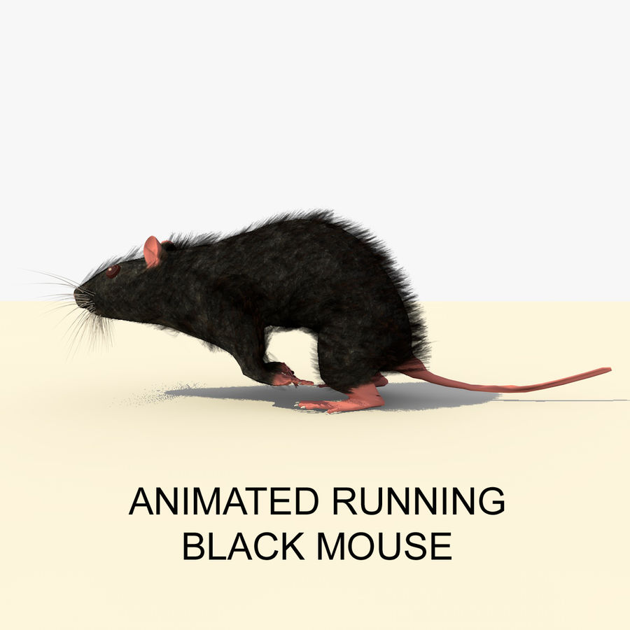 Animated Running Black Mouse royalty-free 3d model - Preview no. 1