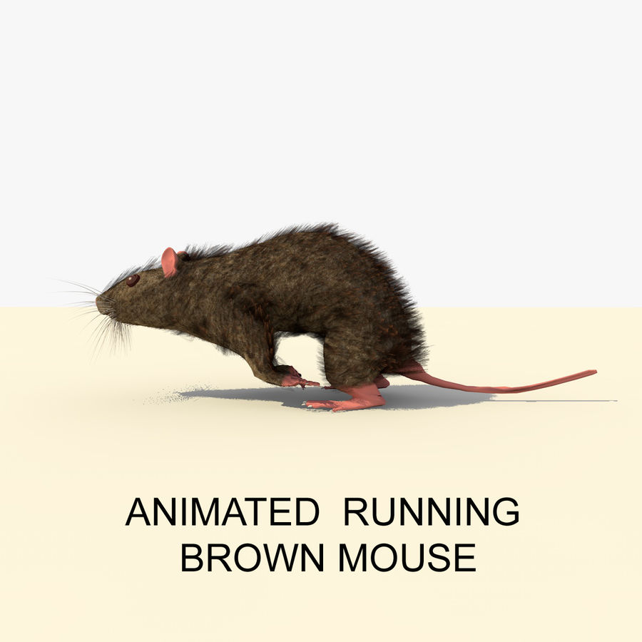 Animated Running Brown Mouse royalty-free 3d model - Preview no. 1