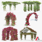 Set Bougainvillea Climbing Roses Of 6 Pergolas With Flowers Ivy 3d model