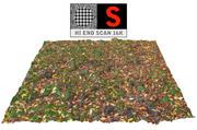 Balayage au sol sur pelouse d'automne 16K 3d model