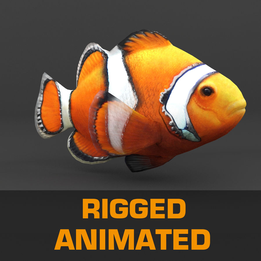 coral reef and fishes royalty-free 3d model - Preview no. 17