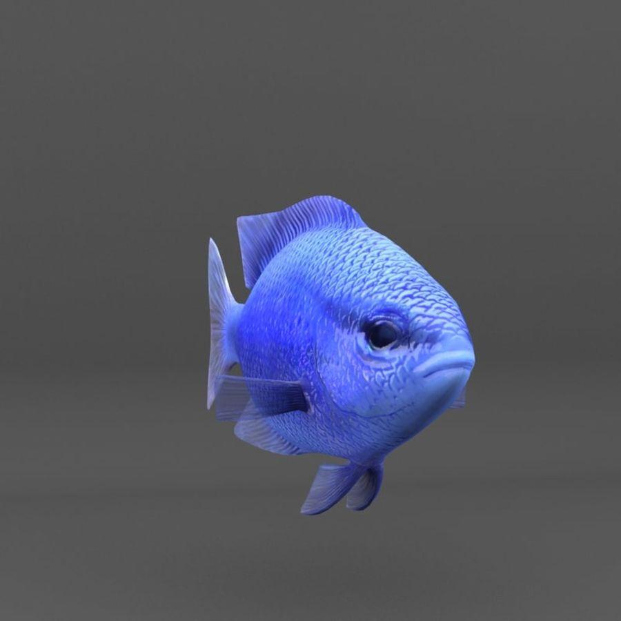 koraalrif en vissen royalty-free 3d model - Preview no. 89