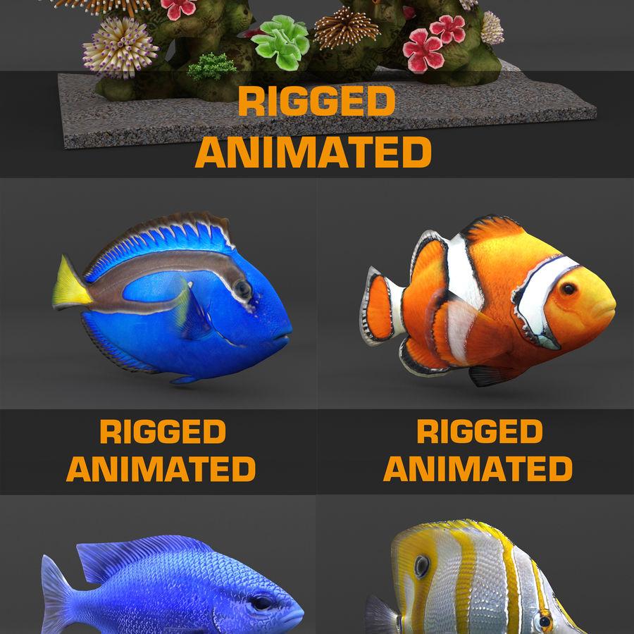 koraalrif en vissen royalty-free 3d model - Preview no. 1