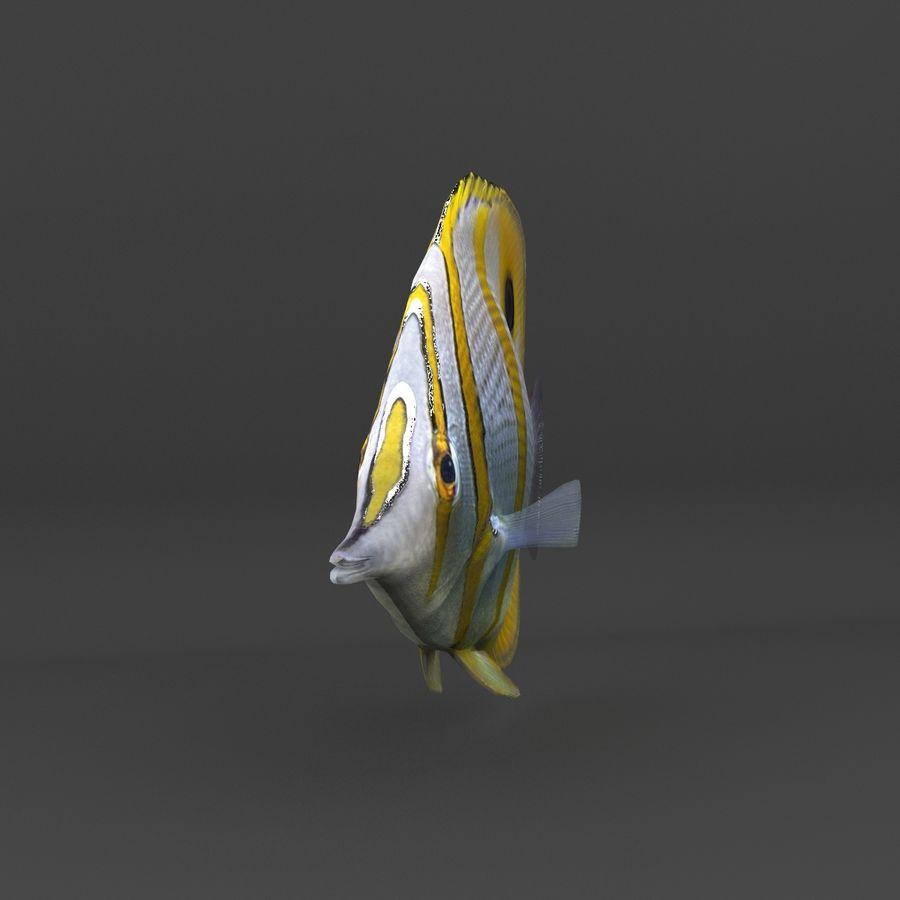 koraalrif en vissen royalty-free 3d model - Preview no. 62