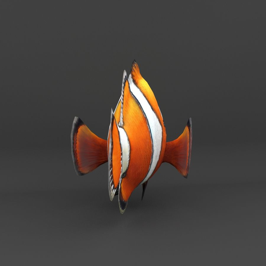 coral reef and fishes royalty-free 3d model - Preview no. 30