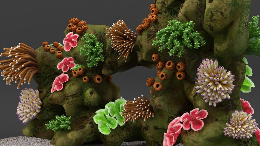 coral reef and fishes royalty-free 3d model - Preview no. 9