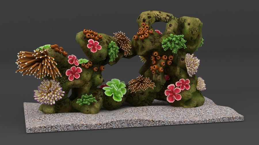 coral reef and fishes royalty-free 3d model - Preview no. 2