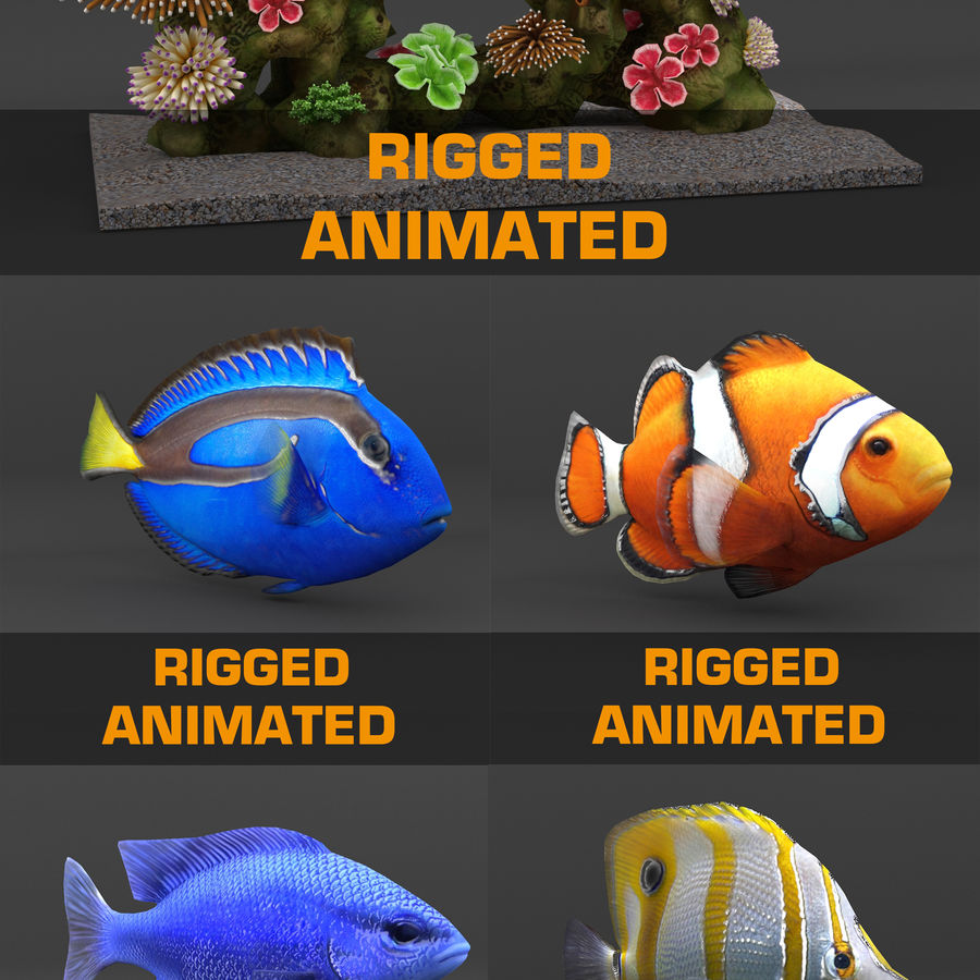 coral reef and fishes royalty-free 3d model - Preview no. 1