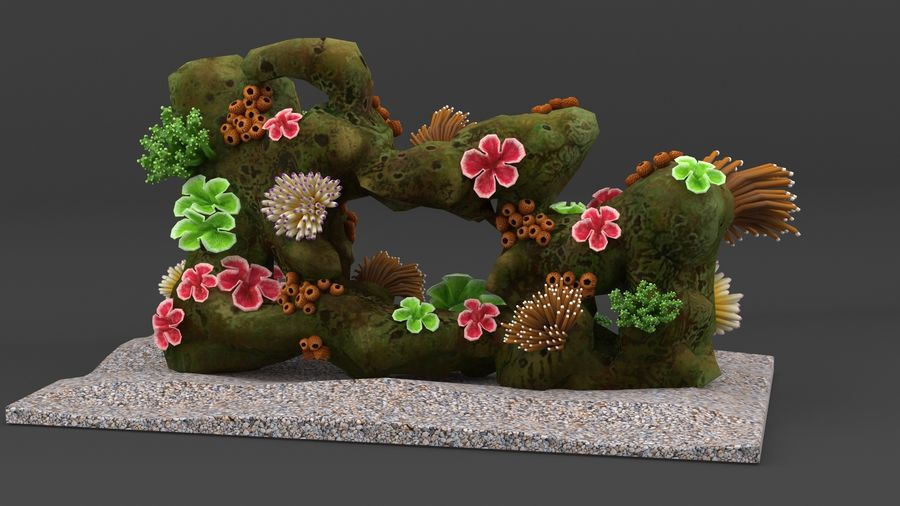 coral reef and fishes royalty-free 3d model - Preview no. 4