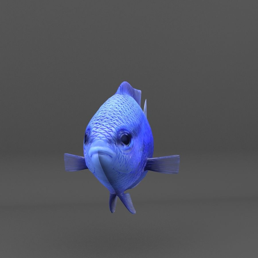 coral reef and fishes royalty-free 3d model - Preview no. 87
