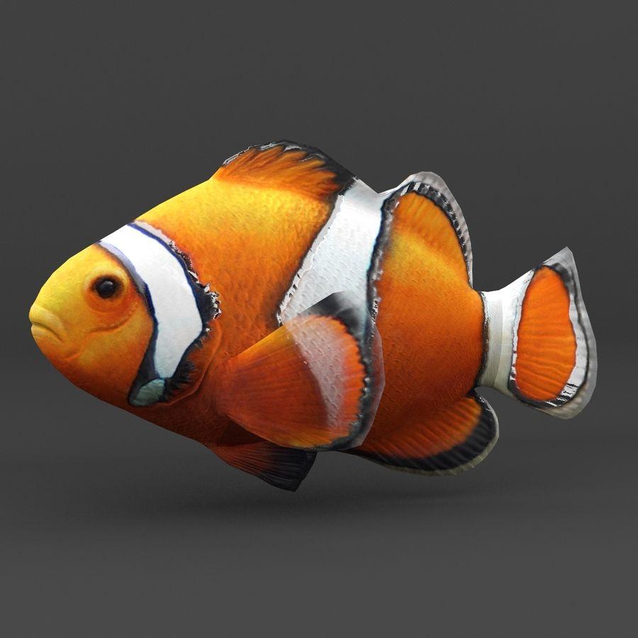 koraalrif en vissen royalty-free 3d model - Preview no. 41