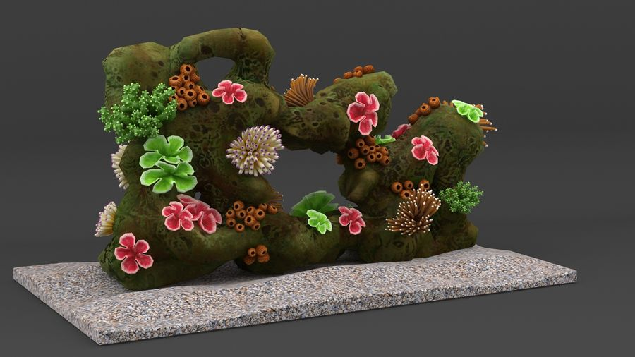 coral reef and fishes royalty-free 3d model - Preview no. 5