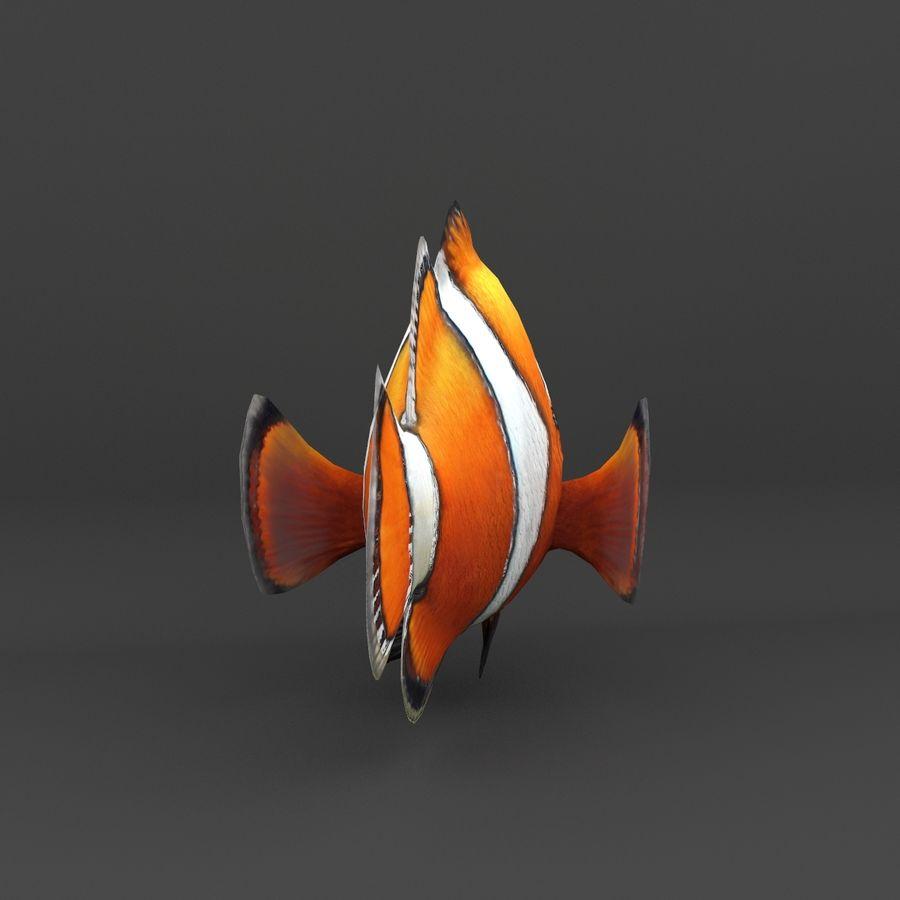 koraalrif en vissen royalty-free 3d model - Preview no. 30