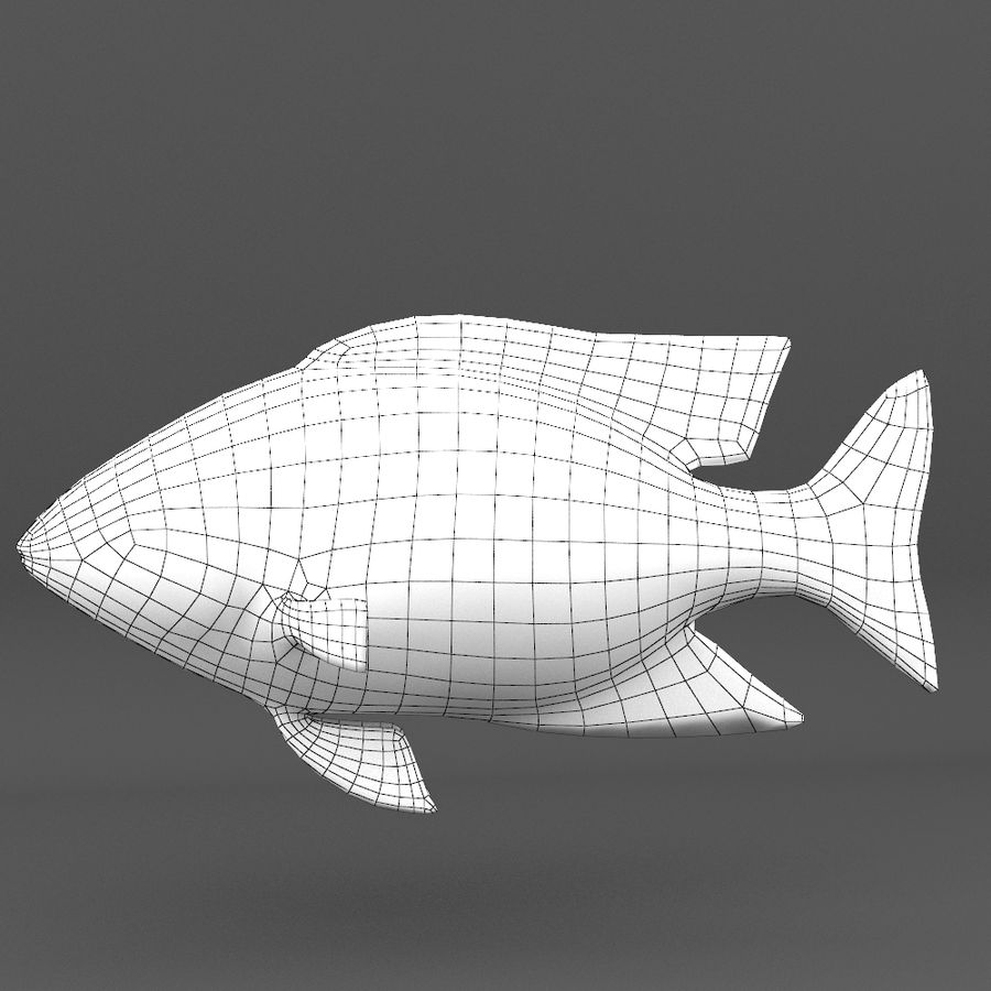 coral reef and fishes royalty-free 3d model - Preview no. 104