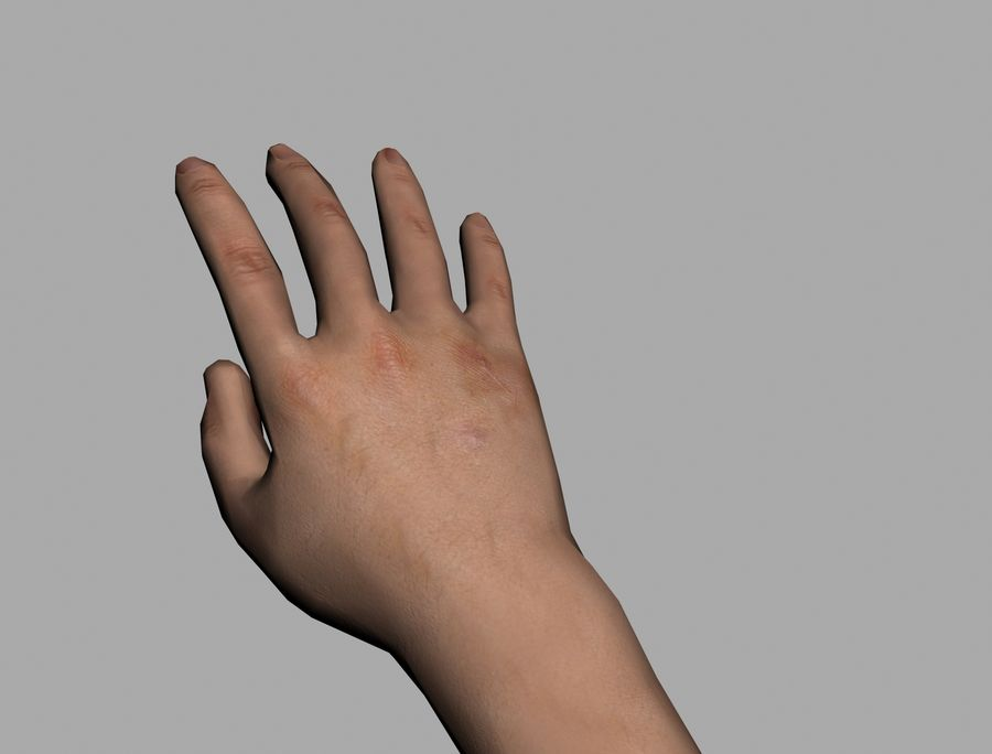 Lowpoly Hand royalty-free 3d model - Preview no. 6