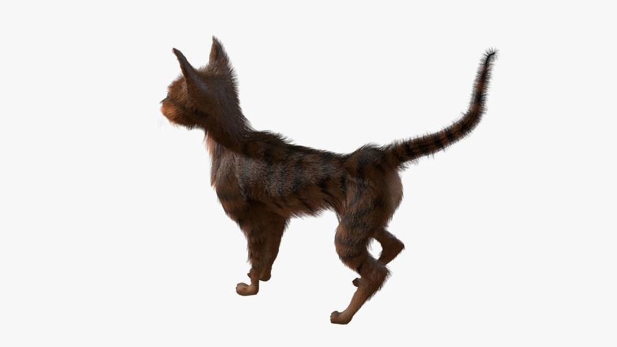 Gatto dipinto con i capelli royalty-free 3d model - Preview no. 4