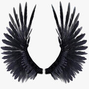Bird Wings Rigged 3d model