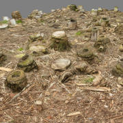 Bamboo Chopped ground cover 3d model