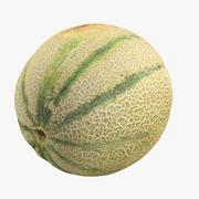Cantaloupe 3d model
