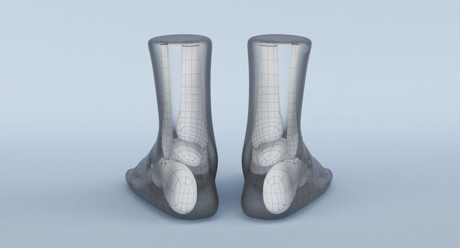 Foot Anatomy Blue royalty-free 3d model - Preview no. 20