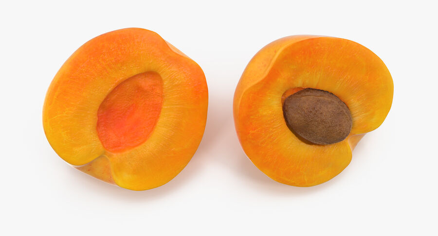 Apricot Cross Section 01 royalty-free 3d model - Preview no. 5