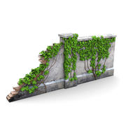 Fencing Wall Vines 1 3d model