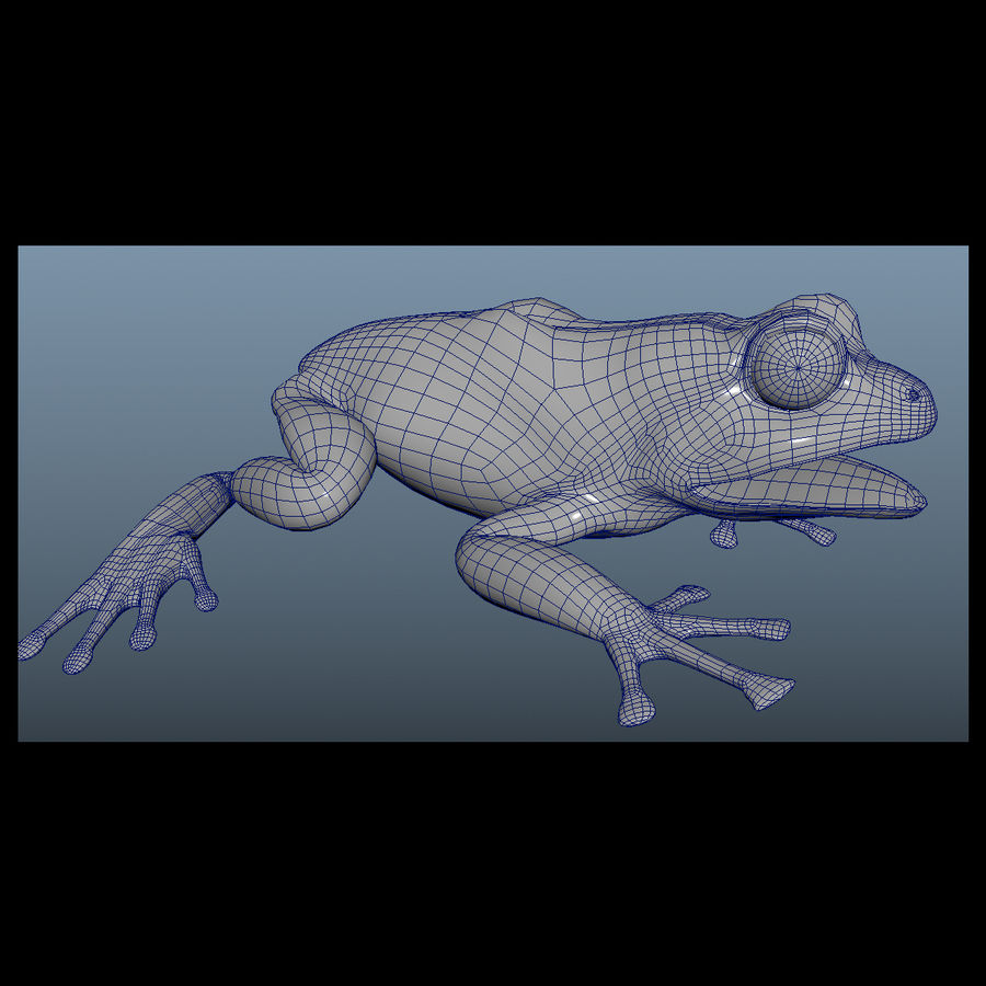 Blue Poison Frog Rigged royalty-free 3d model - Preview no. 9
