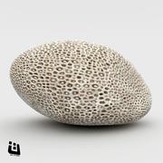 산호 뇌 3d model