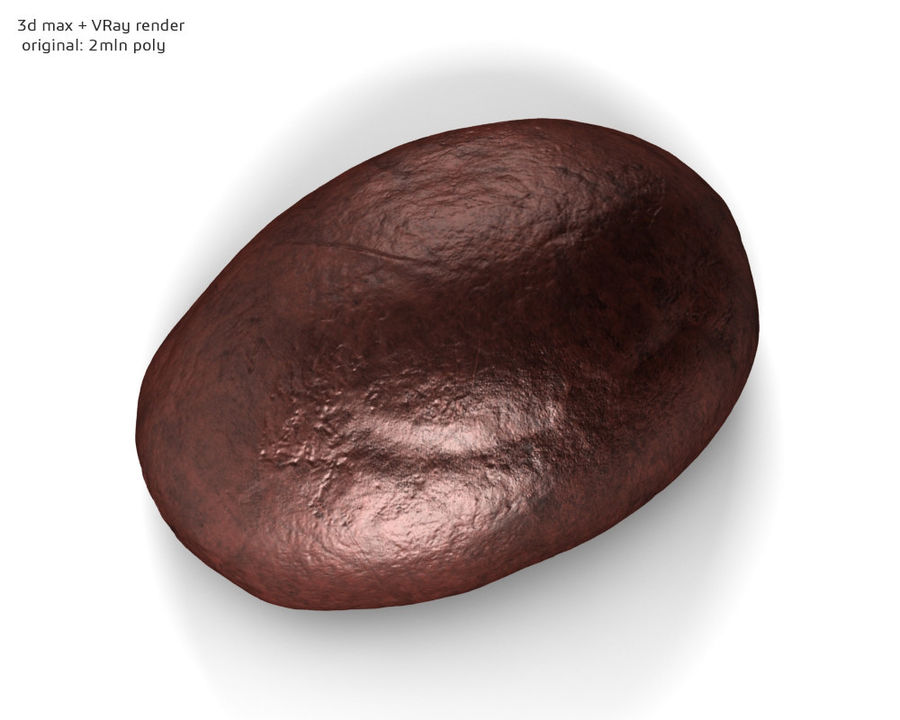 Coffee bean royalty-free 3d model - Preview no. 7