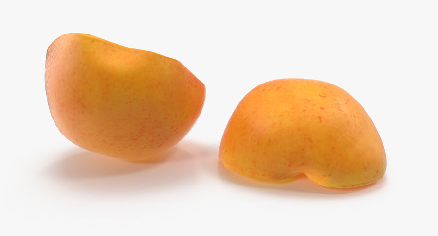 Apricot Cross Section 02 royalty-free 3d model - Preview no. 9
