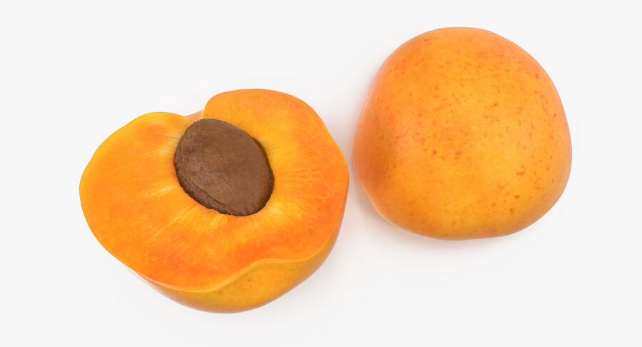 Apricot Cross Section 02 royalty-free 3d model - Preview no. 10