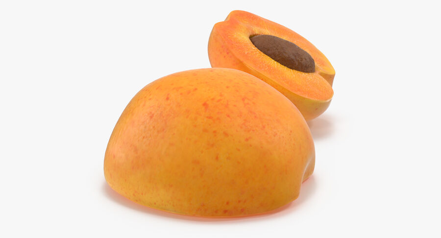 Apricot Cross Section 02 royalty-free 3d model - Preview no. 8