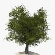 现实树版本1 3d model