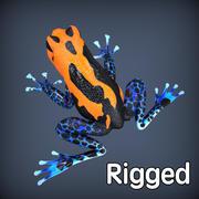 Poison Frog Orange Rigged 3d model