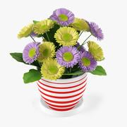 꽃 거베라 꽃다발 3d model
