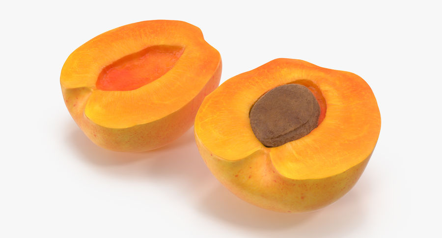 Apricot Cross Section 03 royalty-free 3d model - Preview no. 3