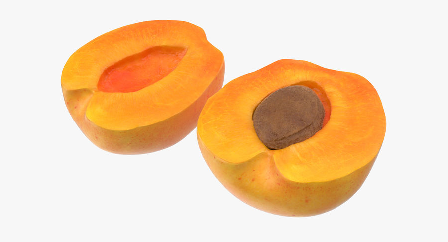 Apricot Cross Section 03 royalty-free 3d model - Preview no. 2
