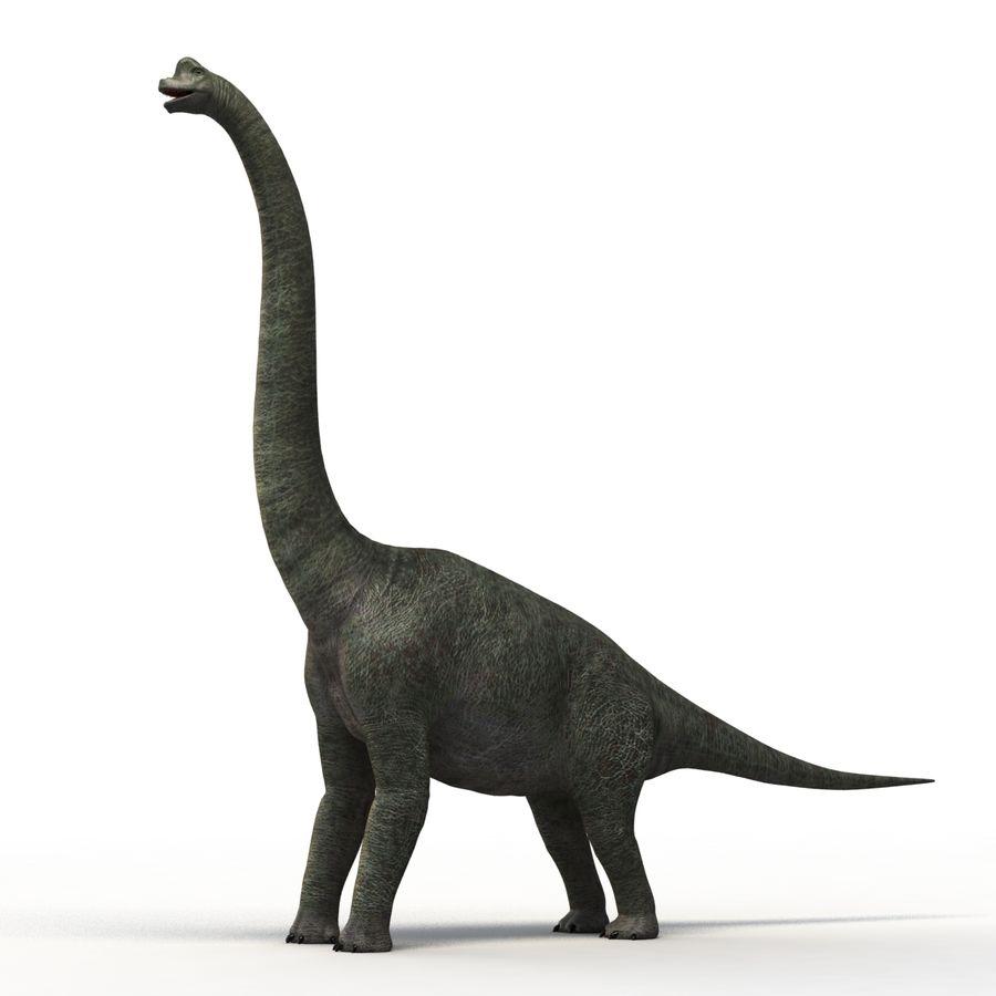 Braquiosaurio royalty-free modelo 3d - Preview no. 2