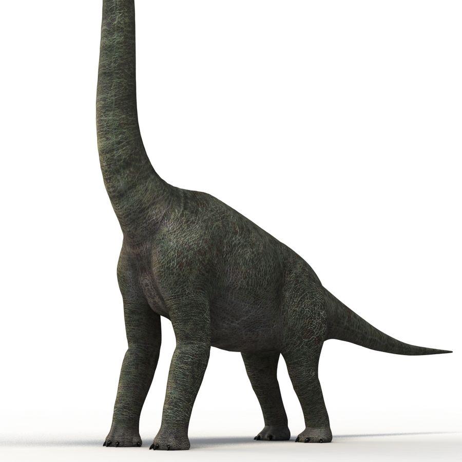 Braquiosaurio royalty-free modelo 3d - Preview no. 10